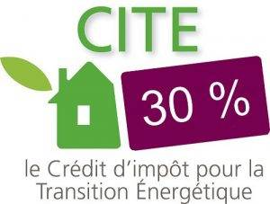 CITE Audit 30%